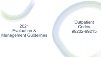 2021 E&M Guidelines Office/other Outpatient Services